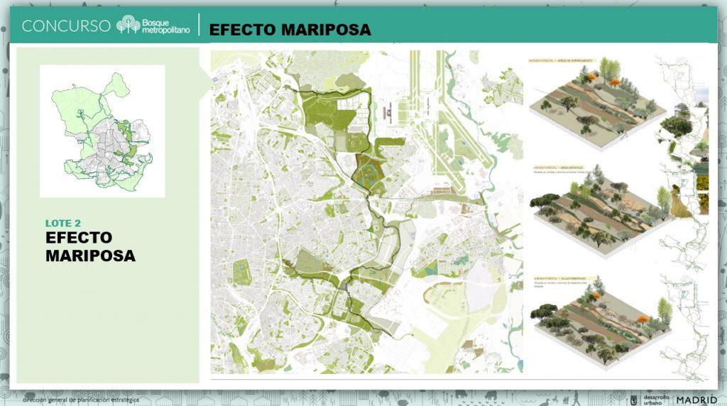 Propuesta ganadora del lote 2 del concurso de Bosque Metropolitano
